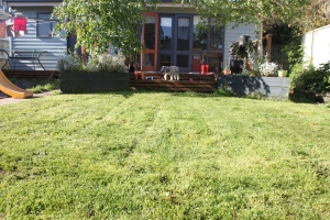 Lawns mowed